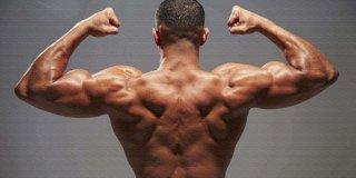 En İyi 15 Sırt Kası Hareketi, Egzersizi ve Fitness Antrenmanları