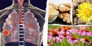 Akciğere Ne İyi Gelir? Temizleyici ve Koruyucu 16 Besin Önerisi