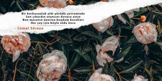 Cemal Süreya Şiirleri-Cemal Süreya'nın En Güzel ve Anlamlı 15 Şiiri