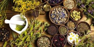 Adet Söktürücü Bitkiler Nelerdir? Adet Düzensizliğini Önlemenin Yolları Nelerdir?