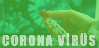Corona Virüsünün (COVID-19) İnsan Vücudu Üzerindeki Etkisi Nelerdir?