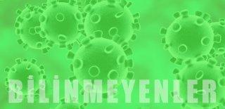 Korona Virüs Hakkında Bilinmeyen 8 Bilgi!