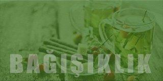 Bağışıklık Sistemini Güçlendiren Bitki Çayları ve Doğal Öneriler