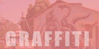 Sokak Sanatı Graffiti Hakkında Bilinmeyen 15 İlginç Bilgi!