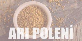 Arı Poleni Nedir? Arı Poleninin Faydaları Nelerdir?