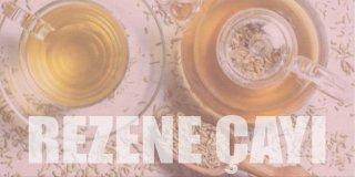 Rezene Çayının Faydaları Nelerdir? Neye İyi Gelir?