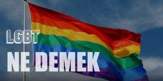 LGBT Ne Demek?