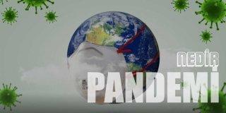 Pandemi Ne Demek?