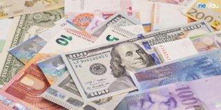 Rüyada Çok Para Görmek Ne Demek? Çok Kağıt ve Bozuk Para Görmenin Rüya Tabiri