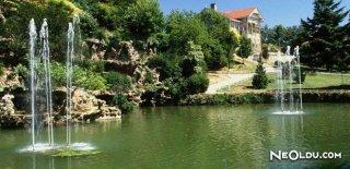 Şehrin Merkezinde Doğa: Yıldız Parkı