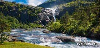 Dünyanın En Büyük Nehirleri