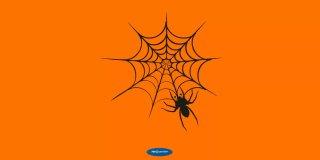 Rüyada Örümcek Ağı Görmek - Anlaşılır ve Değerli Yorumlar