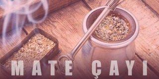 Mate Çayı Nedir? Mate Çayının İnsan Sağlığına 10 Faydası