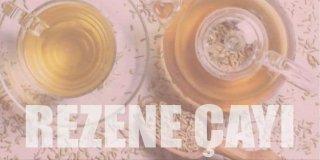 Rezene Çayının Mucizevi 8 Faydası ve Kullanıcı Yorumları