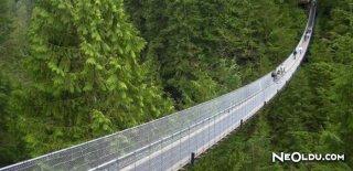 Bu Köprülerden Geçmek Cesaret İstiyor!