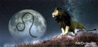 Aslan Burcu Erkeği Aşk Hayatı