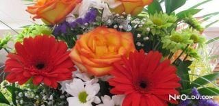 Burcunuza Göre Çiçeğiniz