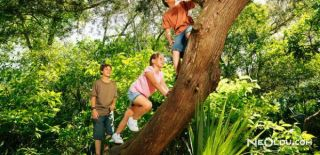 Ağaca Tırmanmak Hafızayı Güçlendiriyor!