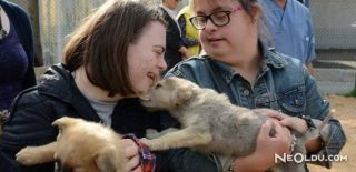 Hayvanlarda Down Sendromu Görülür Mü?