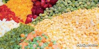 Dondurulmuş Gıda Ürünleri Hakkında Bilmeniz Gerekenler