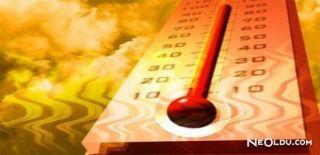 Termometre Kırılırsa…