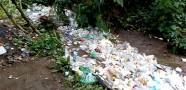Nehirde Su Yerine Çöp Akıyor