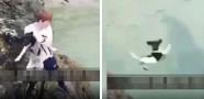 Vicdansız Kadın Köpeği Uçurumdan Denize Attı!