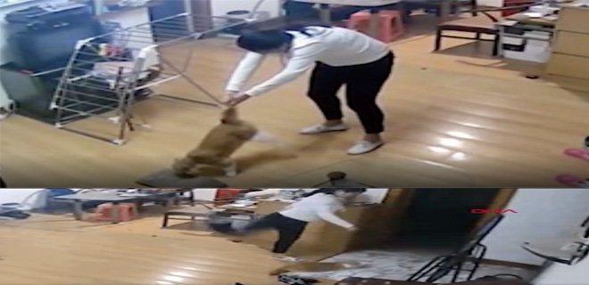 Kediye İşkence Yapan Vicdansız Kadın Kameraya Yakalandı!